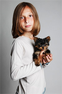 Studio portrait of young boy holding teacup Yorkie puppy